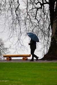 Ensam i regn