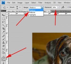 hund_redigering